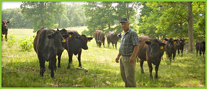 North Carolina Grassfed Beef Farmer Kenneth Strader