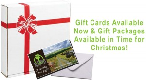 Gift Cards and Gift Boxes